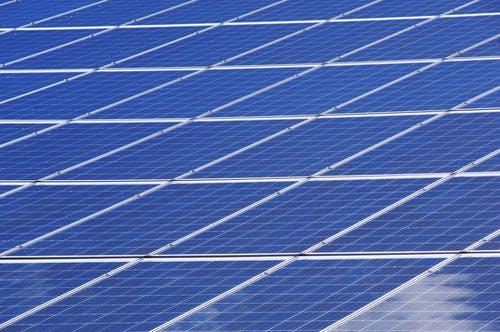 Investimento Sustentável: Como Estimar O Impacto No Seu Bolso