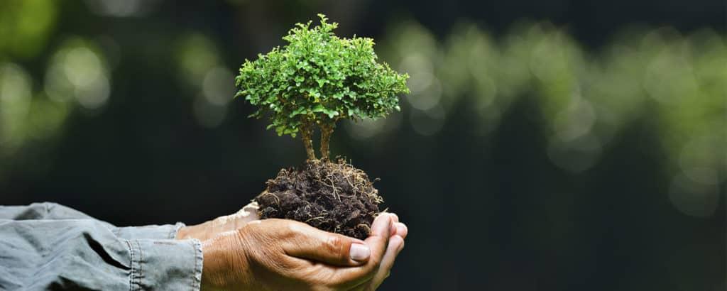 elaborar plano de controle ambiental