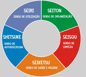 modelo programa 5s