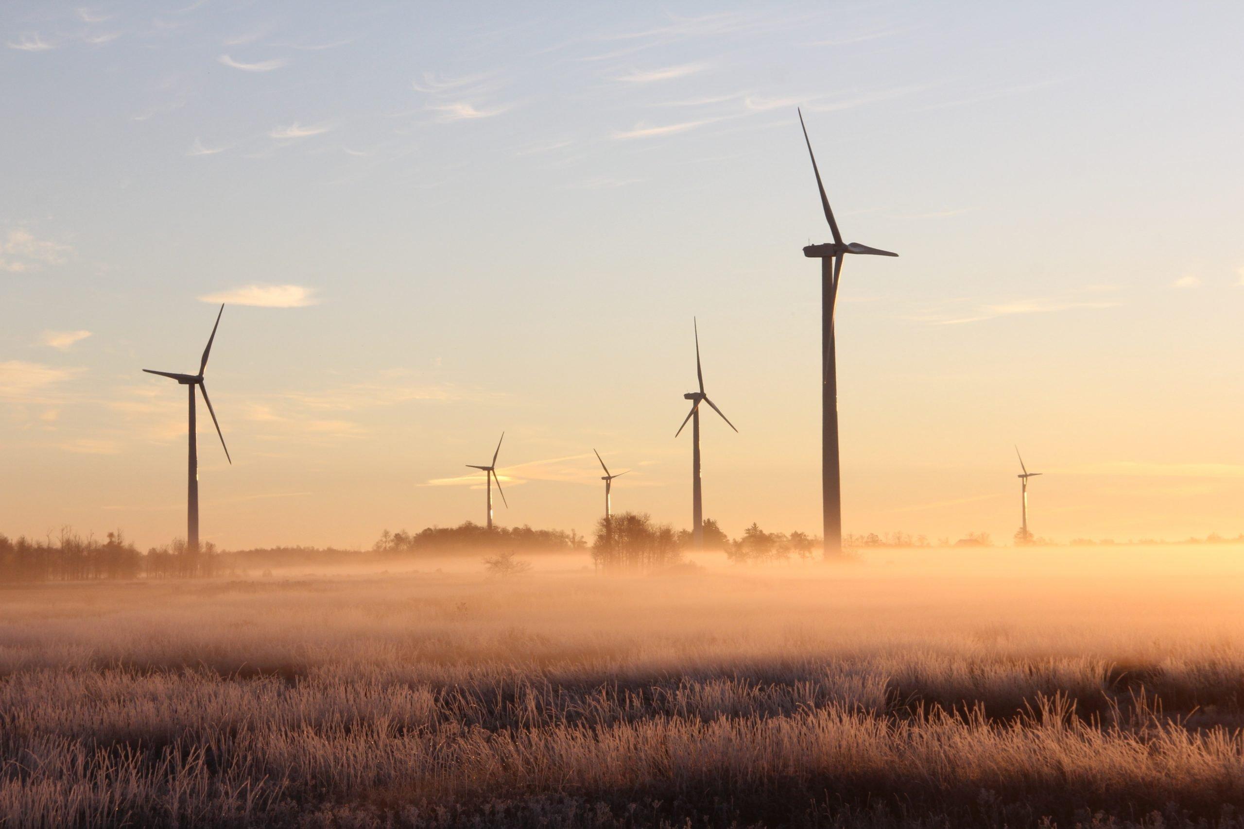 Pessoa Trabalhando Com Energia E Sustentabilidade